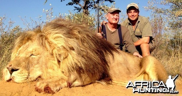Pending number 1 Lion