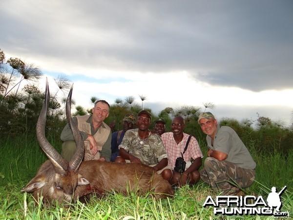 SCI #13 East African SITATUNGA