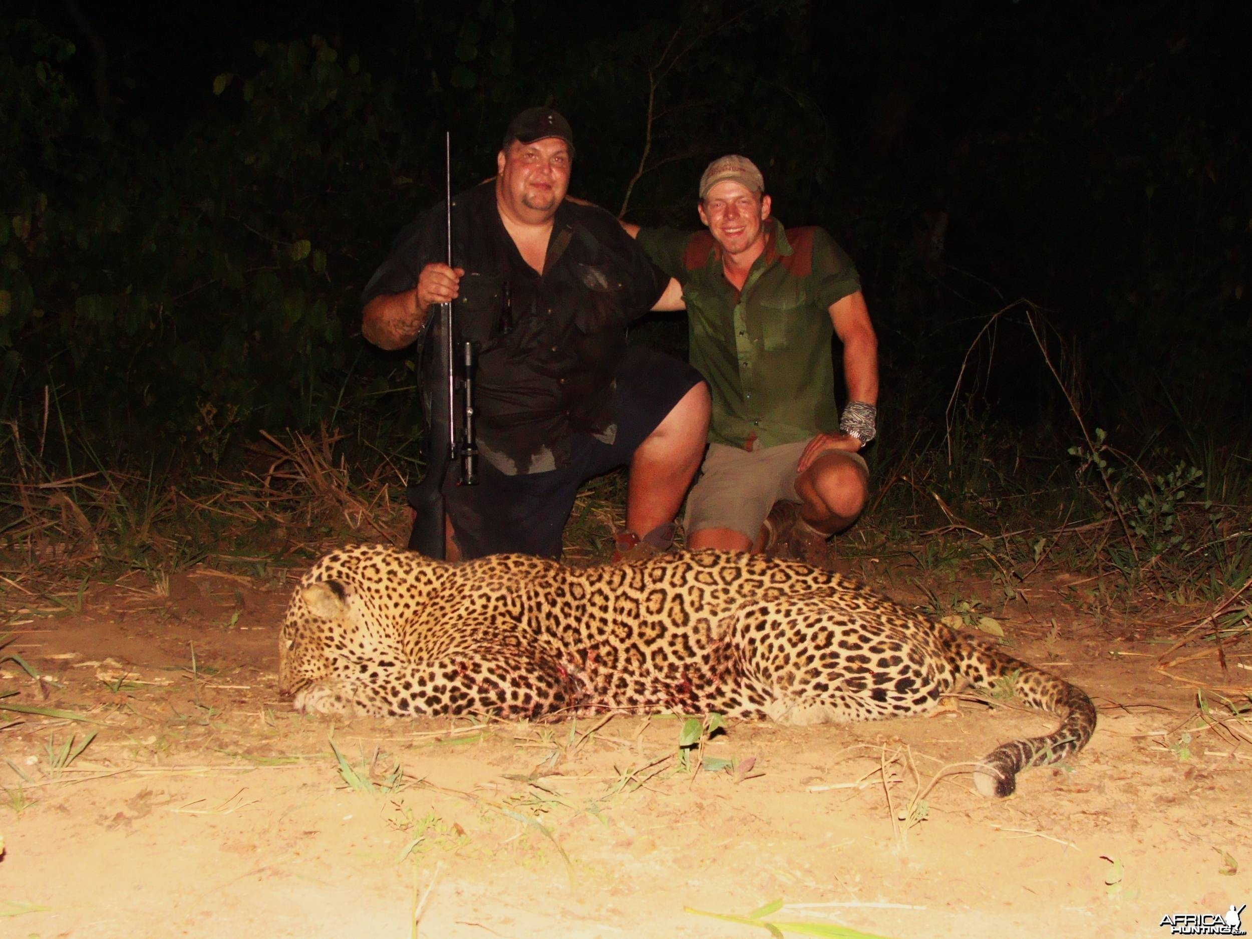 78 Kilo leopard from CAR