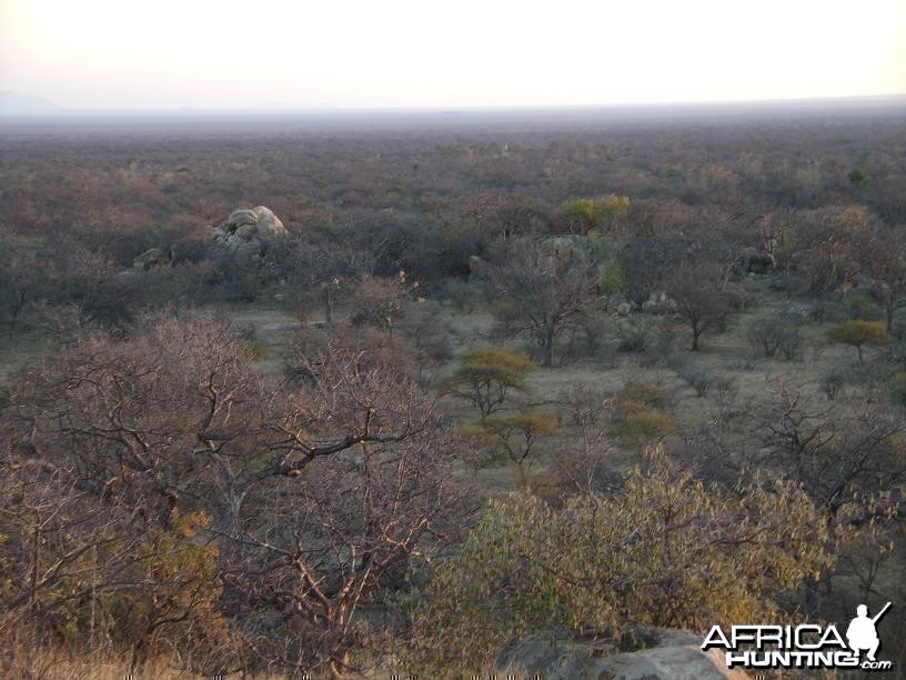 View of Kgaka Safaris