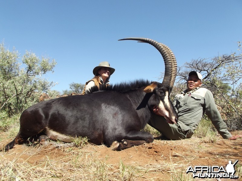 Sable hunt with Wintershoek Johnny Vivier Safaris