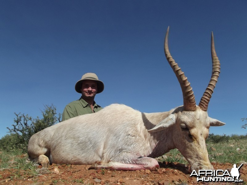 White Blesbok hunt with Wintershoek Johnny Vivier Safaris
