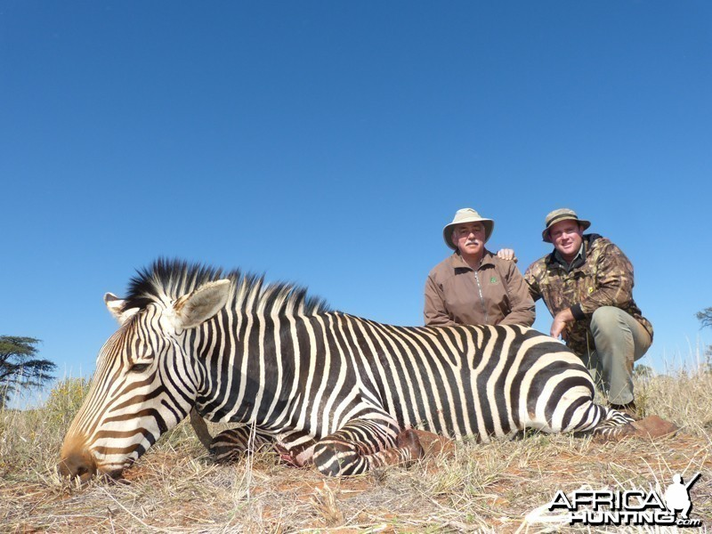 Mountain Zebra hunt with Wintershoek Johnny Vivier Safaris