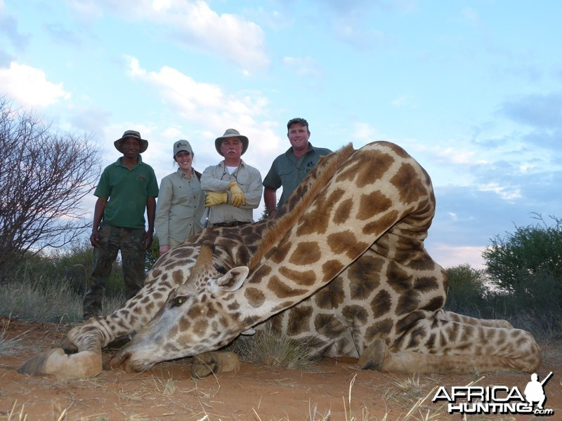 Giraffe hunt with Wintershoek Johnny Vivier Safaris