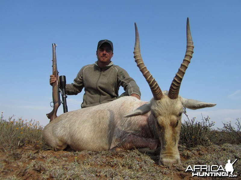 White Blesbuck hunt with Wintershoek Johnny Vivier Safaris