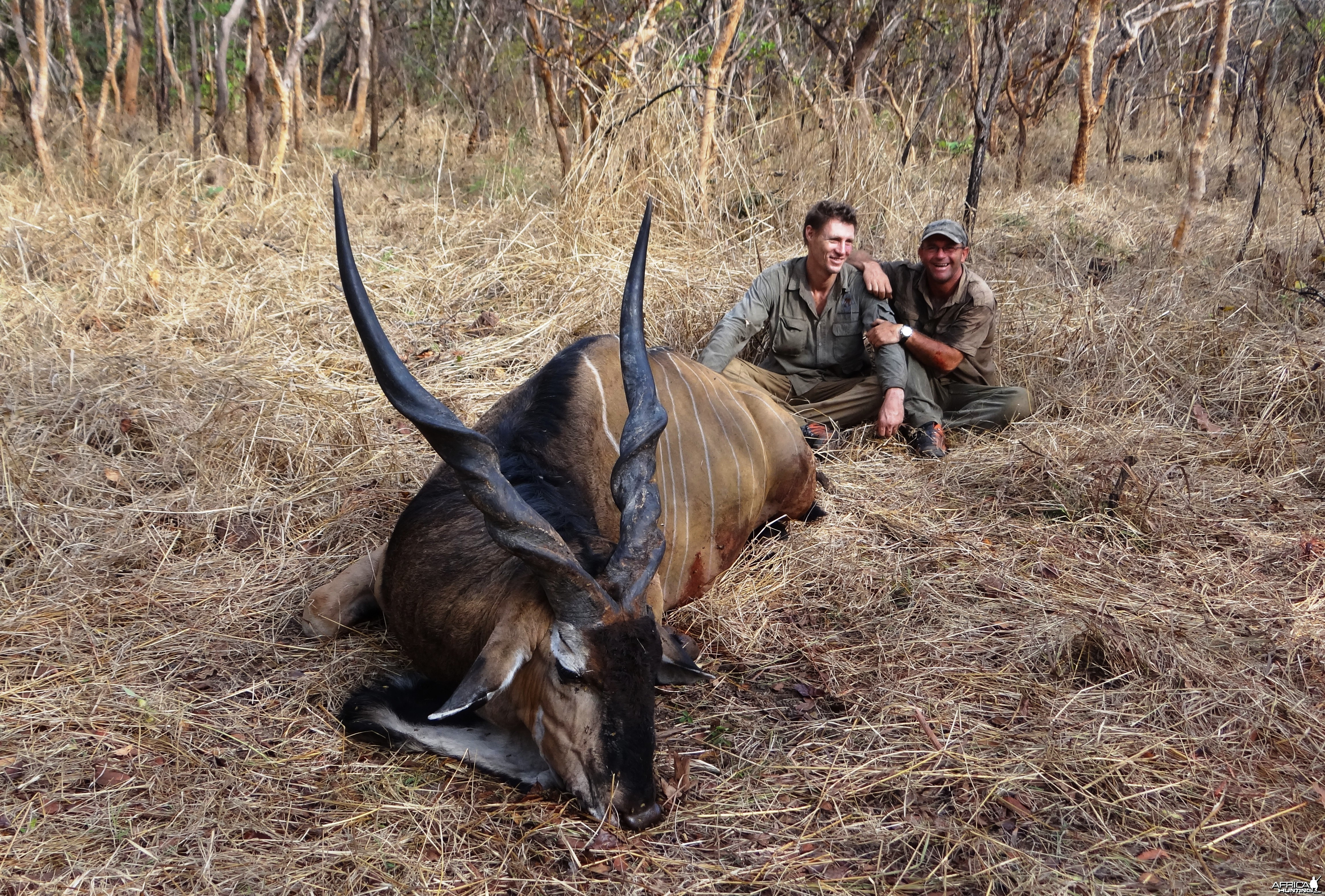 Lord Derby Eland hunt Central African Republic