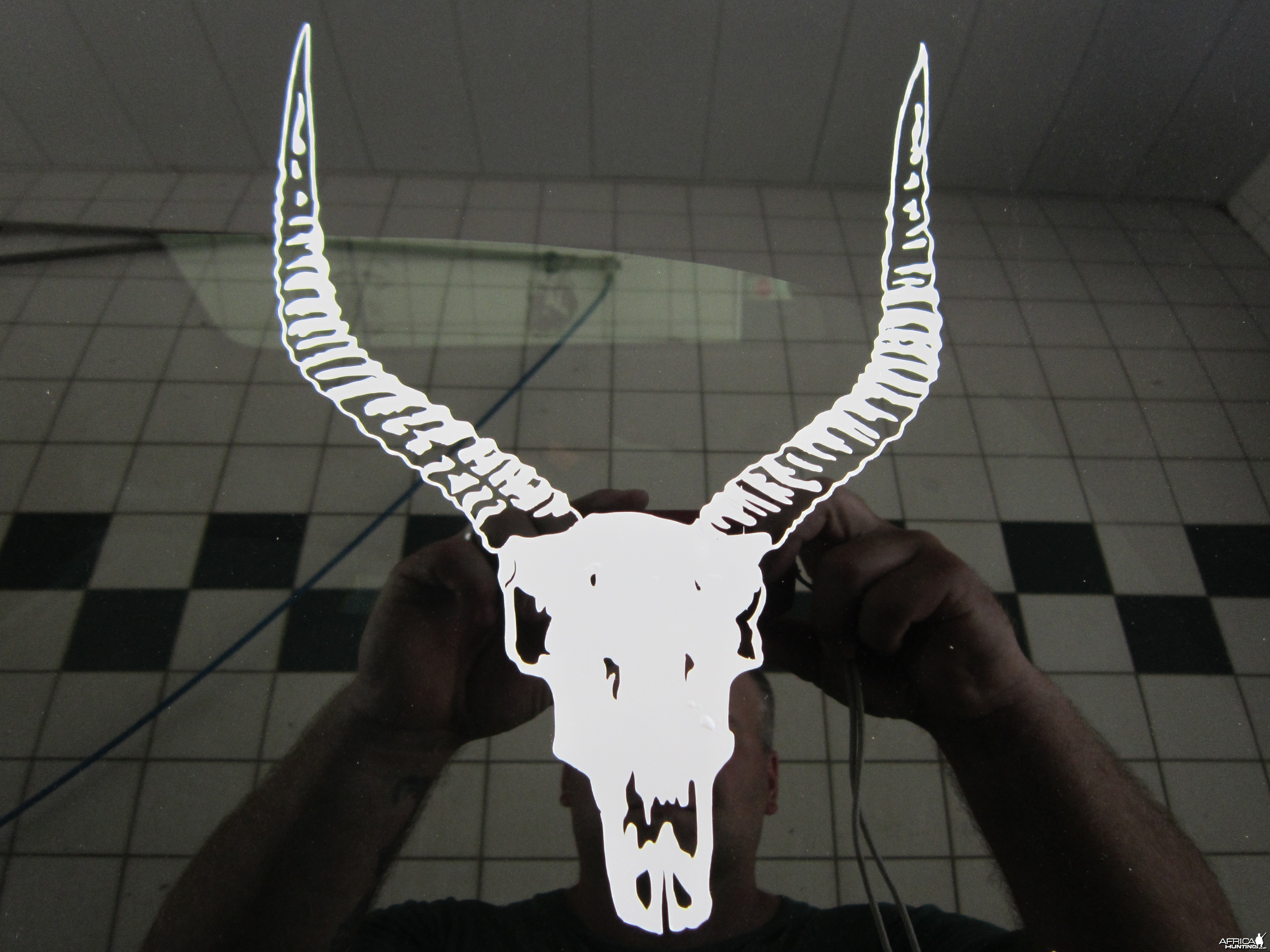 Lechwe Decal Stickers
