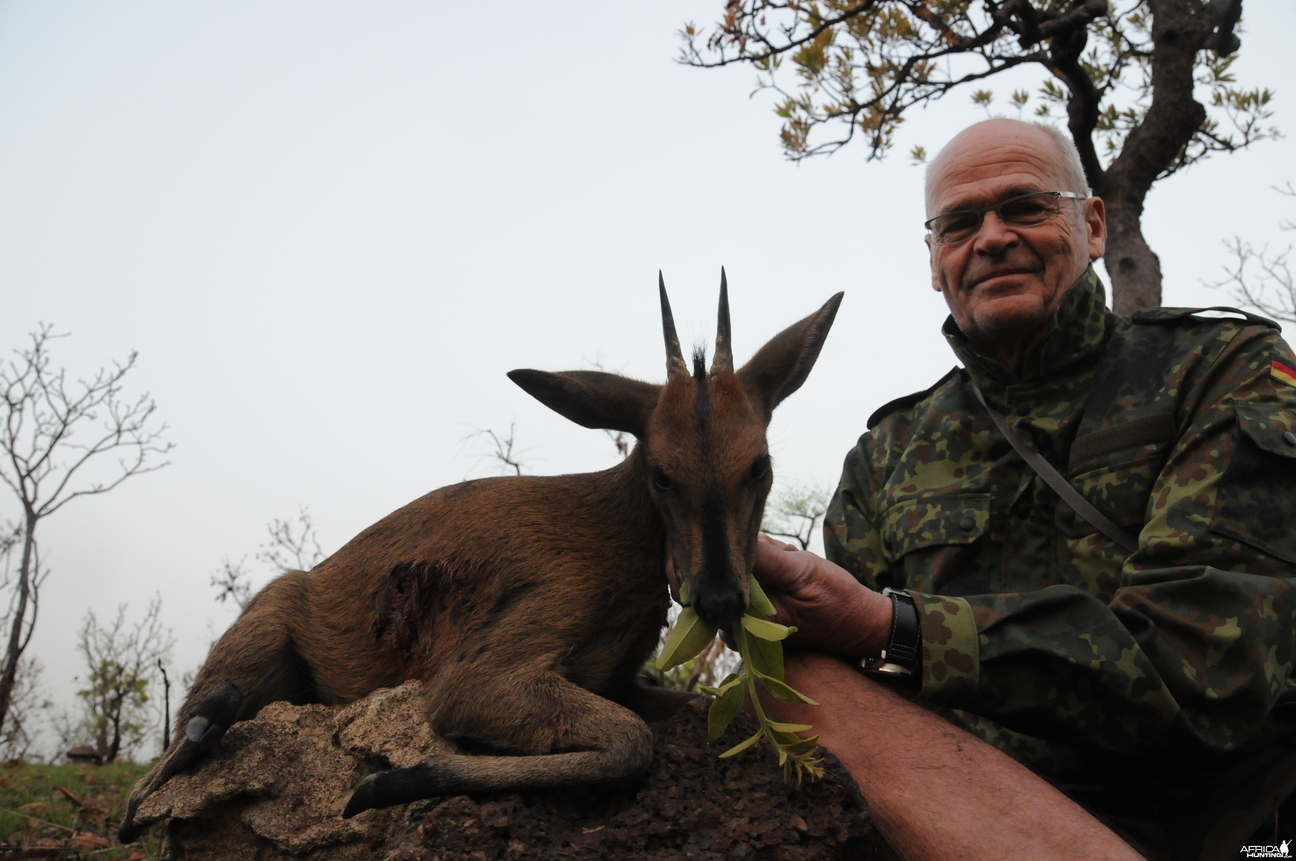 Duiker hunt with CAWA in CAR