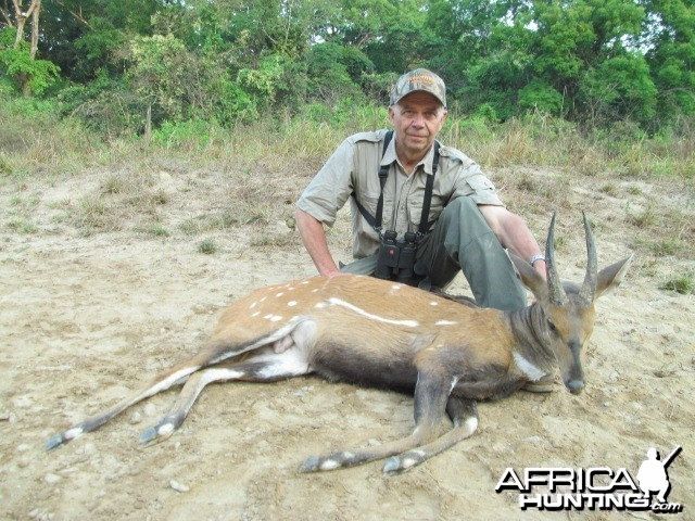 Harnessed Bushbuck hunt with CAWA in CAR