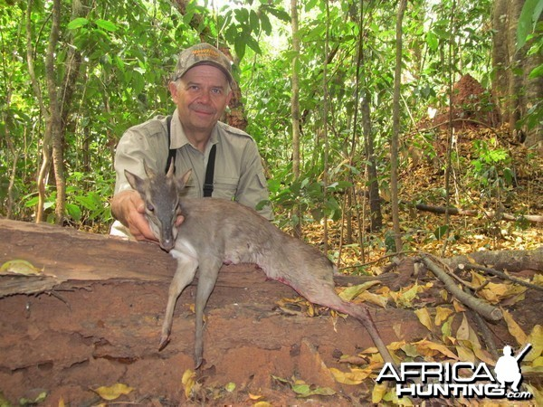 Blue Duiker hunt with CAWA in CAR
