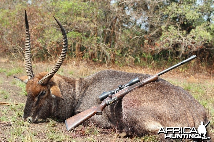 Waterbuck hunt with CAWA in CAR