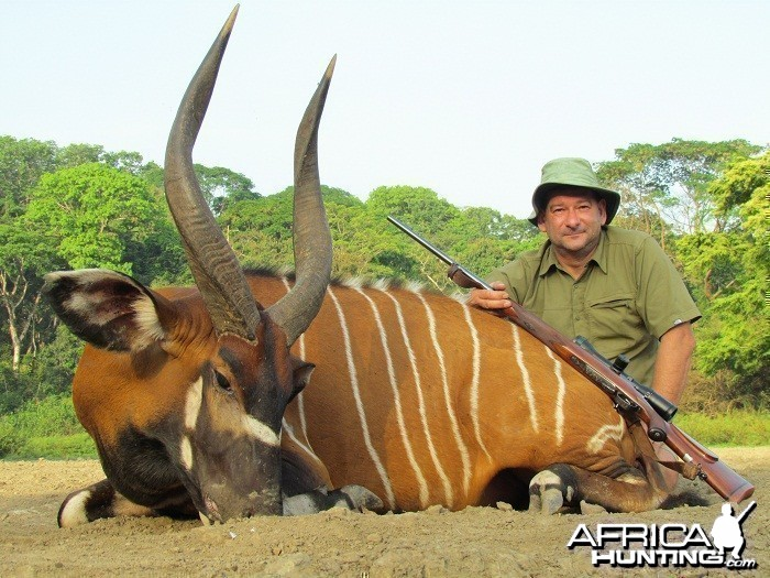 Bongo hunt with CAWA in CAR
