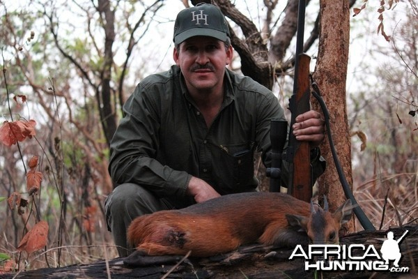 Red Flanked Duiker hunt with CAWA in CAR