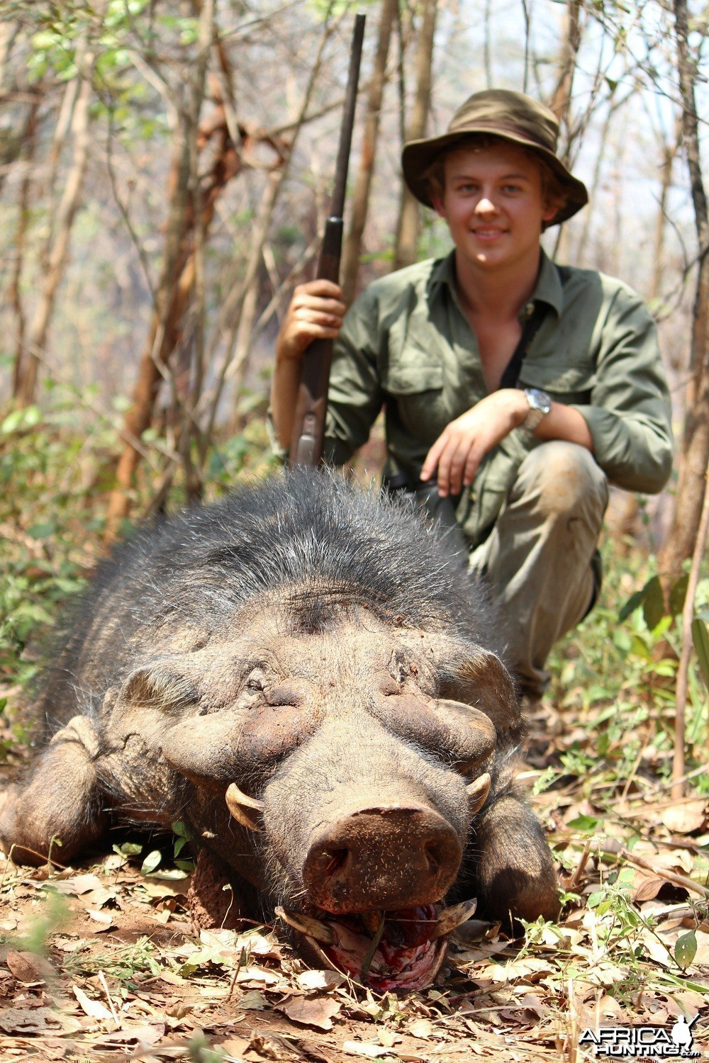 Giant Forest Hog hunt with CAWA in CAR