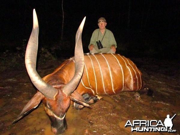 Bongo hunt with CAWA in CAR