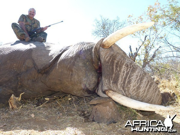 Elephant hunt with Wintershoek Johnny Vivier Safaris