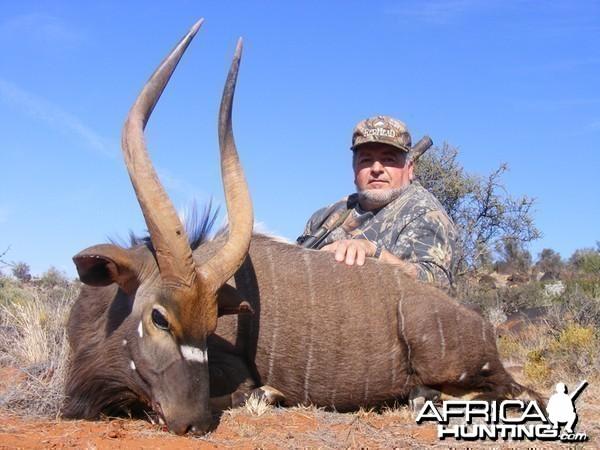 Nyala hunt with Wintershoek Johnny Vivier Safaris