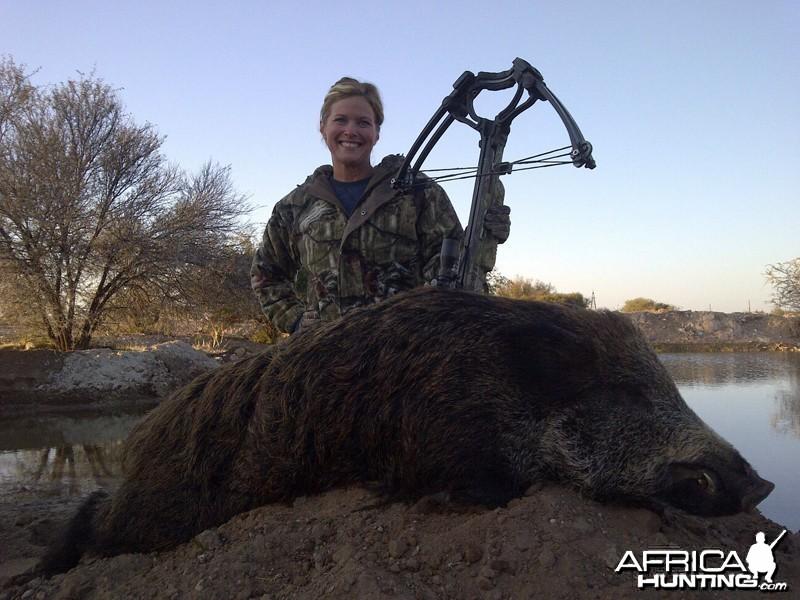 European Wild Boar hunt with Wintershoek Johnny Vivier Safaris
