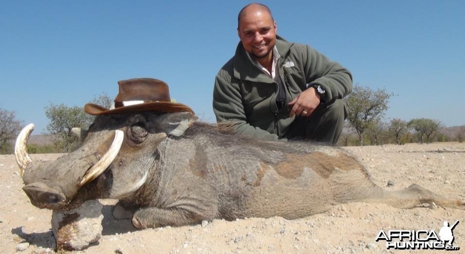 Namibia 2013 Warthog