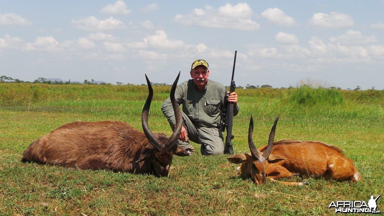 Hunting Uganda East African Sitatunga and Nile Bushbuck