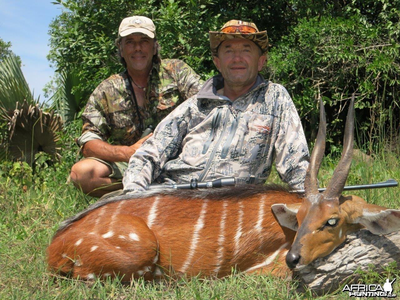Hunting Uganda Nile Bushbuck