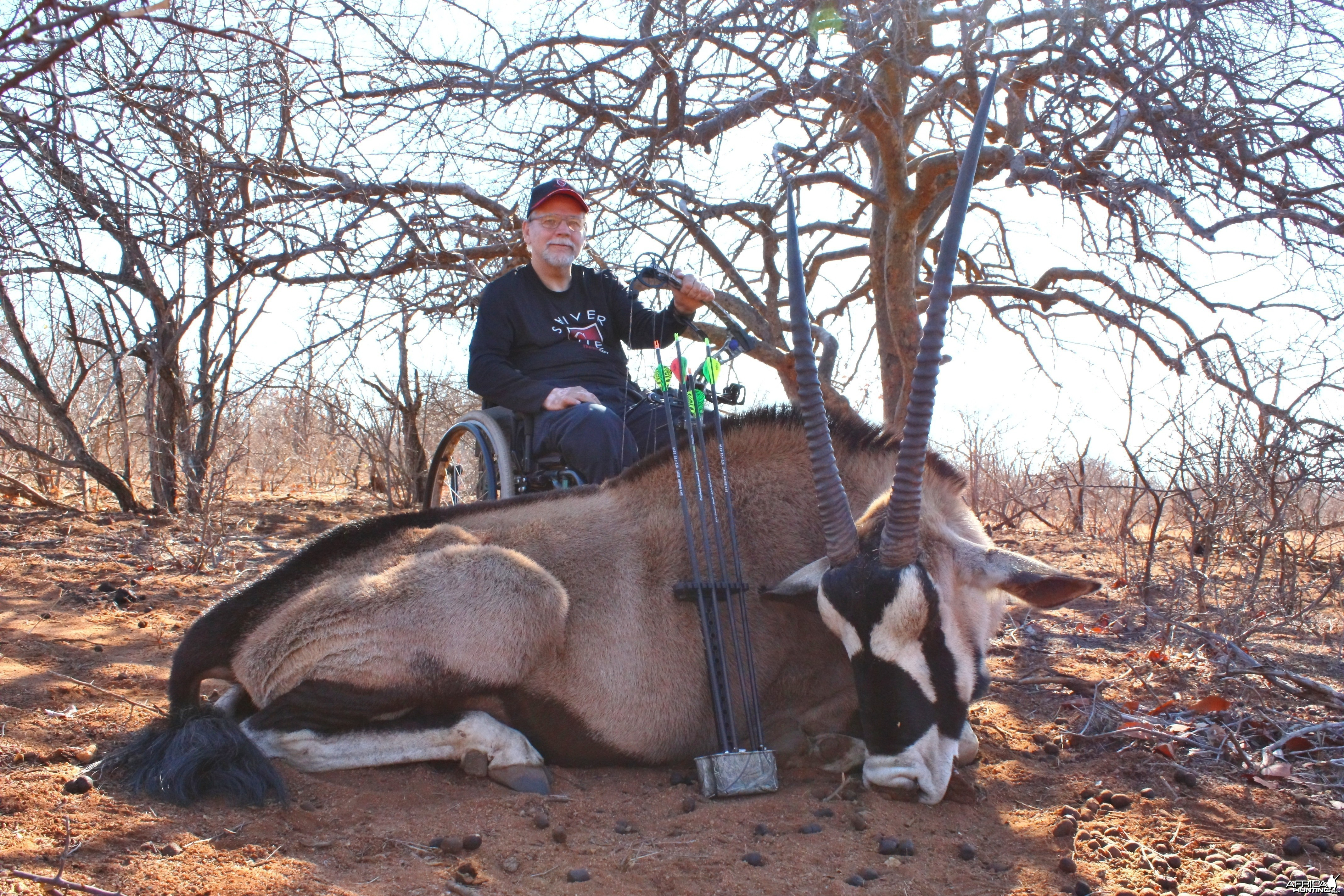 Gemsbok taken at 20yd