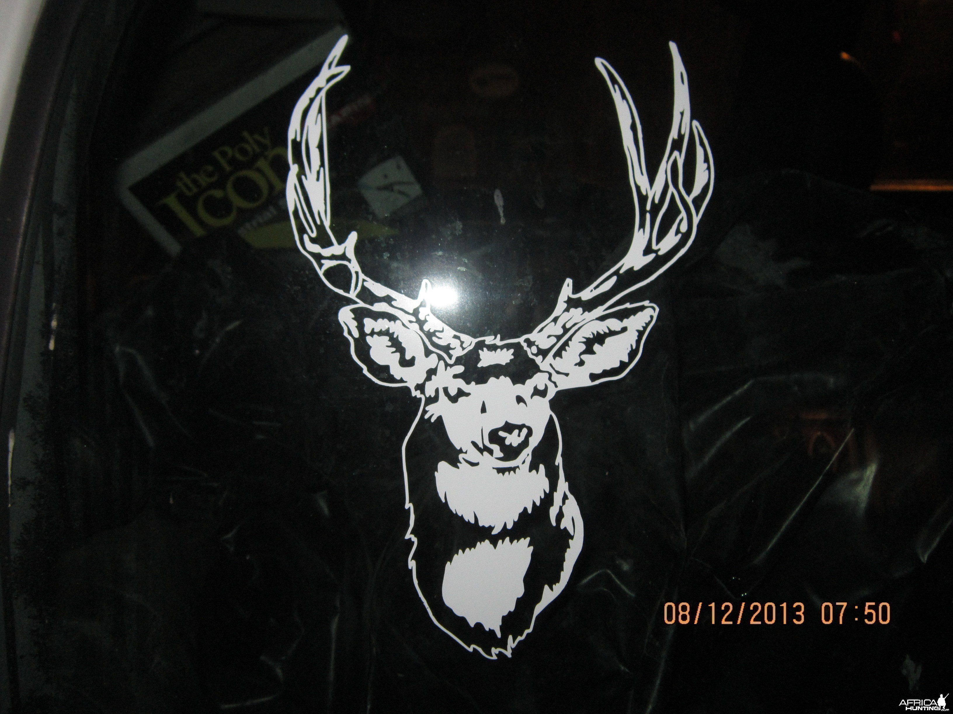 Mule Deer Decal Stickers
