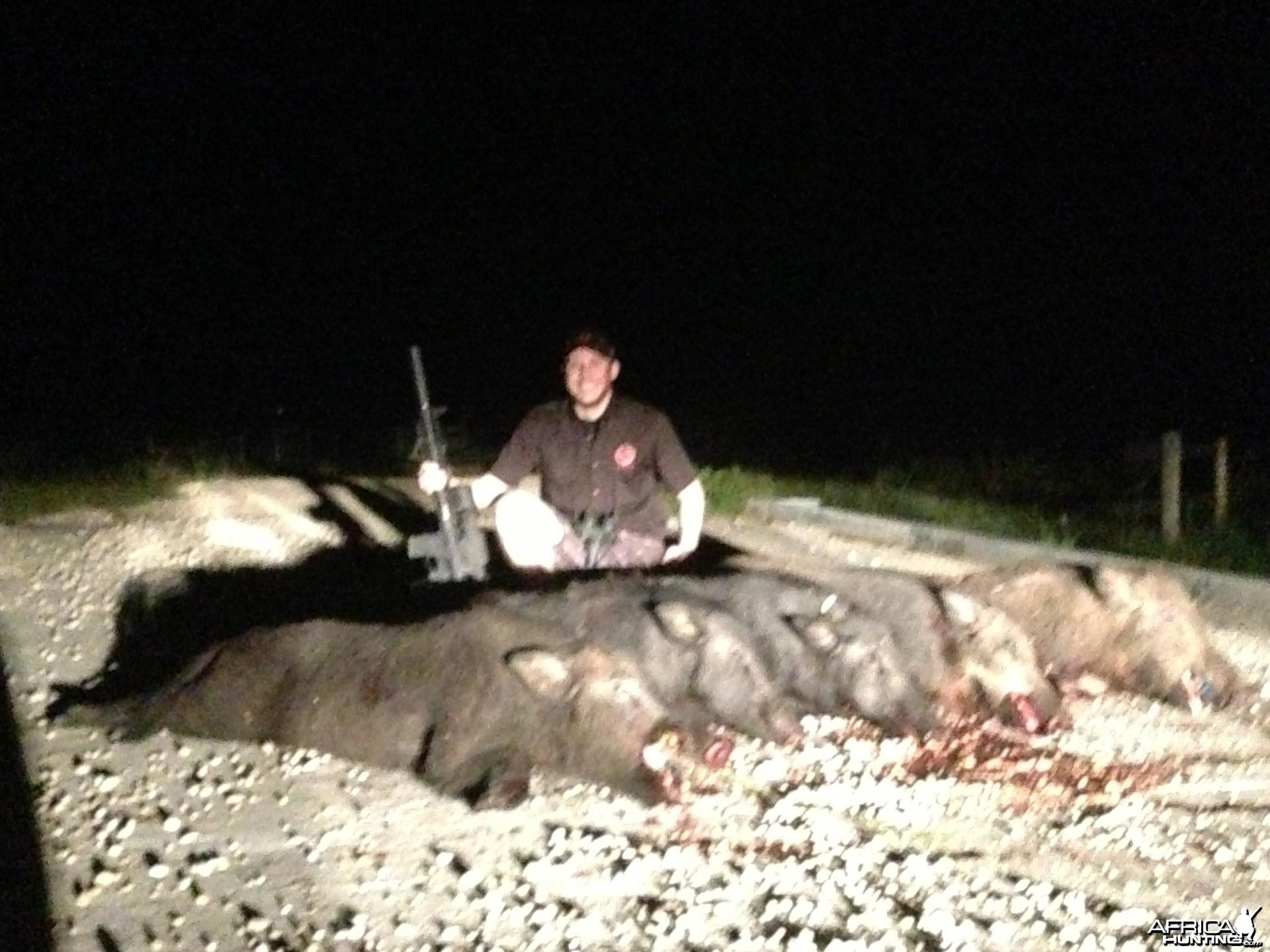Night vision thermal pig hunts in Texas