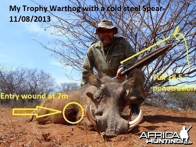 Warthog with a spear-finally!
