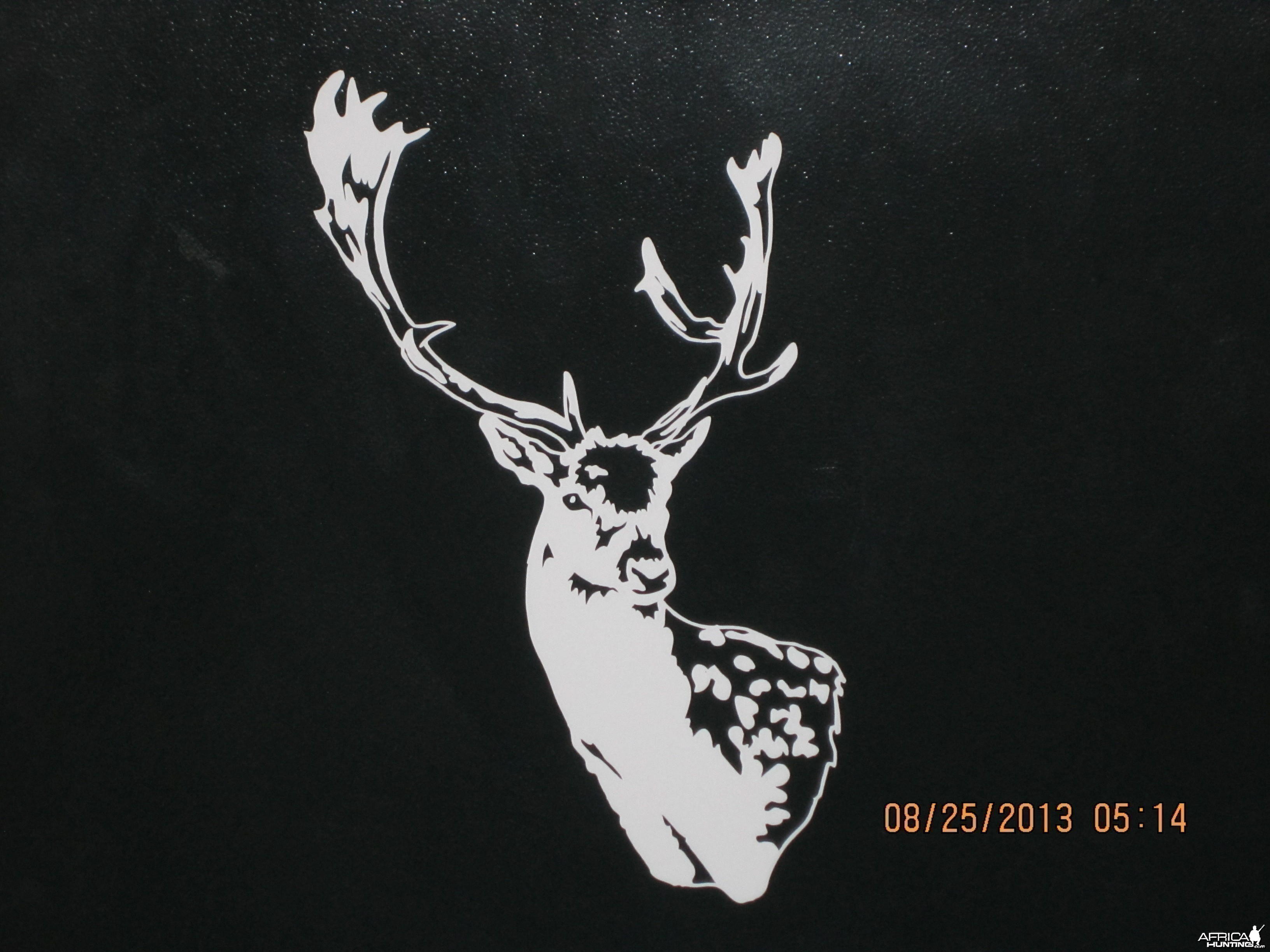 Fallow Deer Decal Stickers