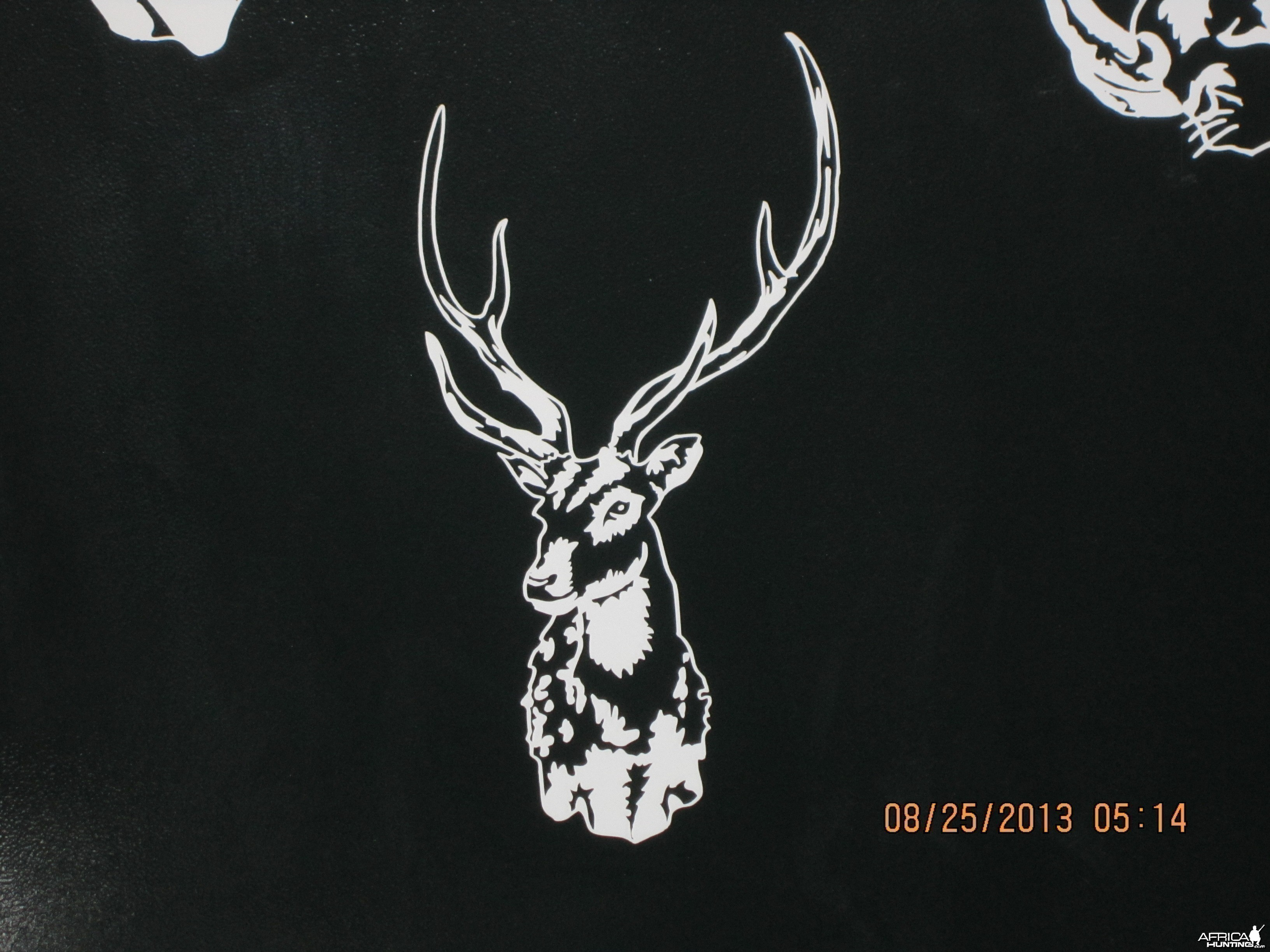 Axis Deer Decal Stickers