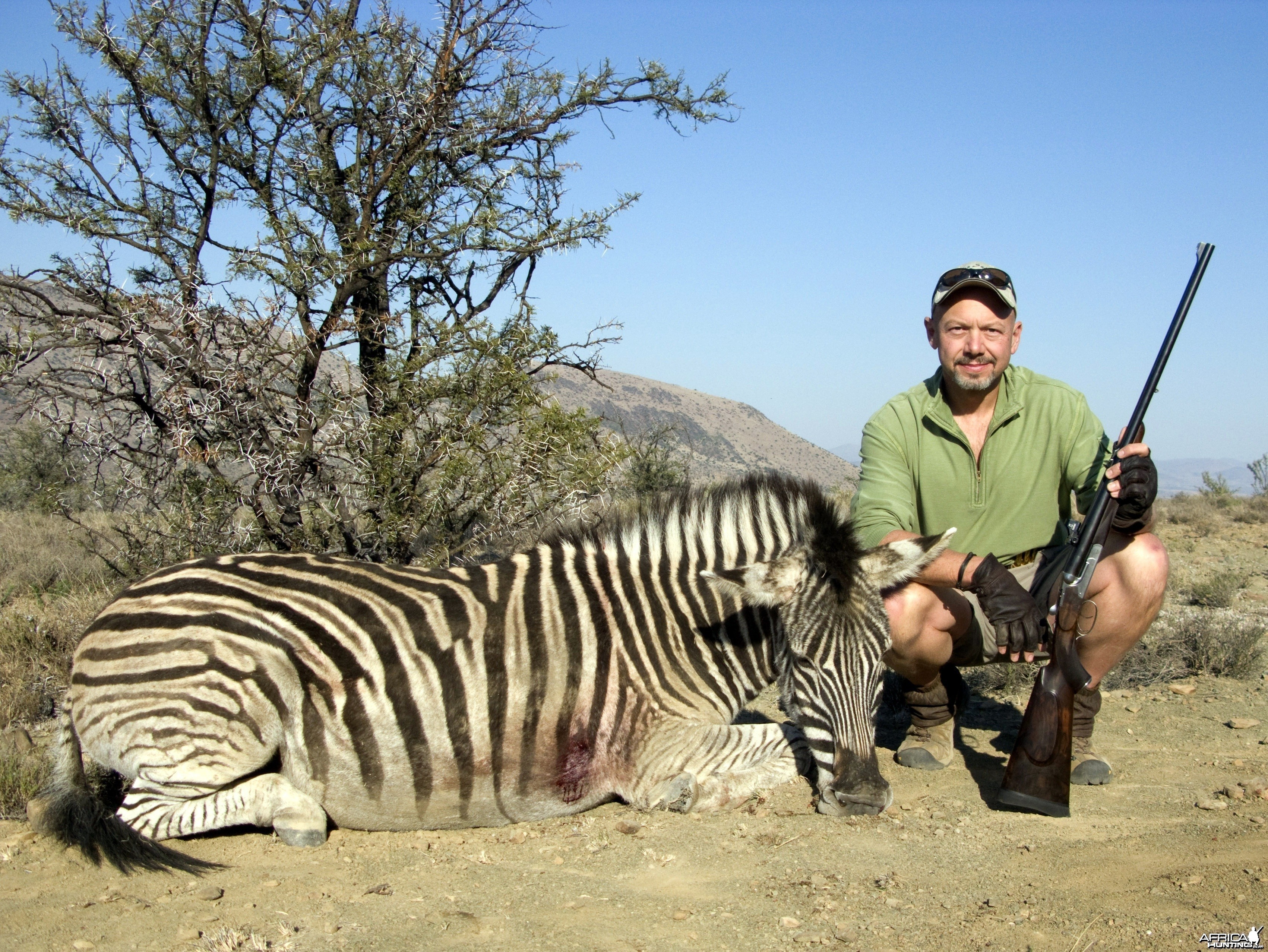 470 NE Zebra