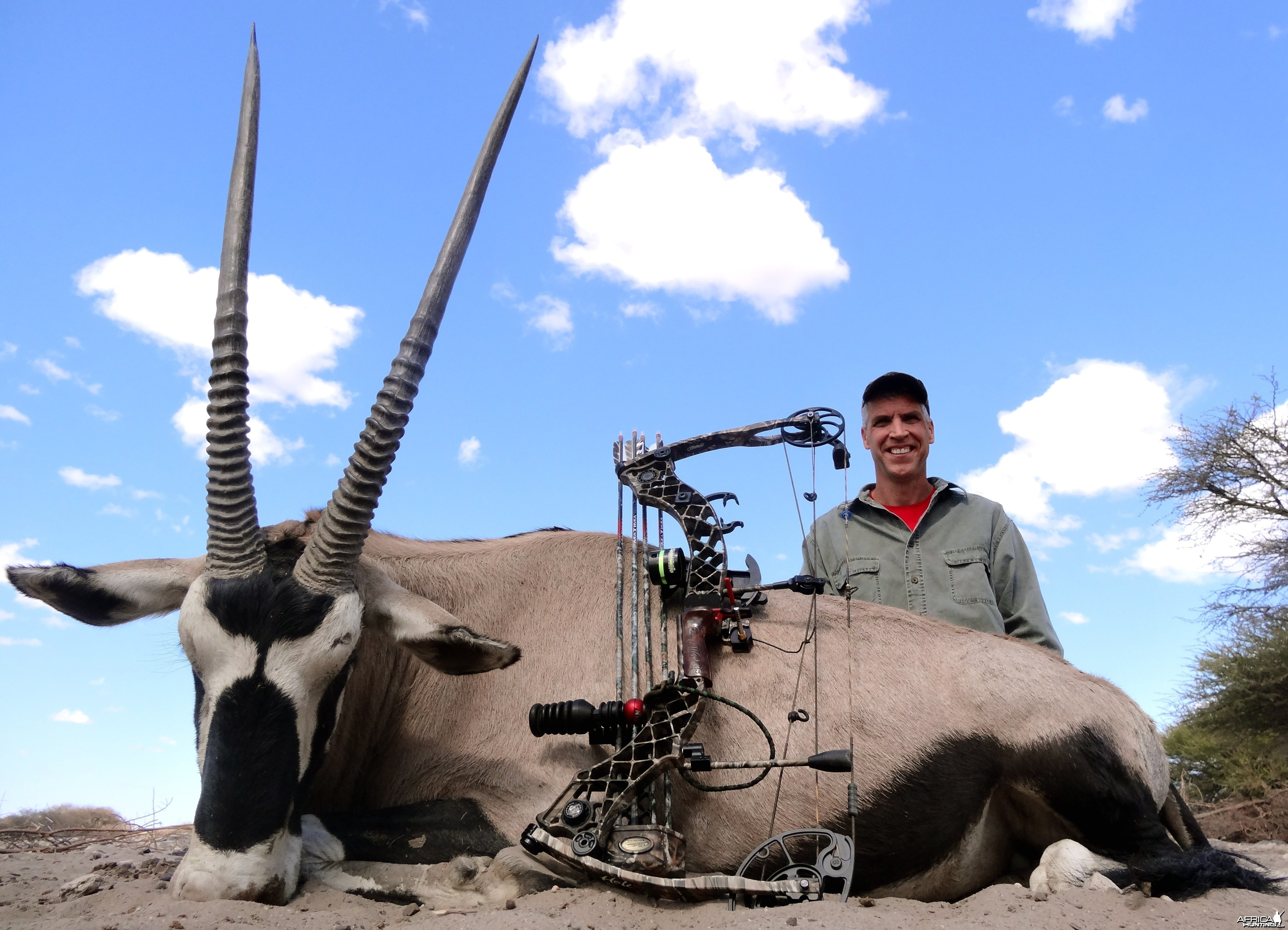 Gemsbok Botswana 2013