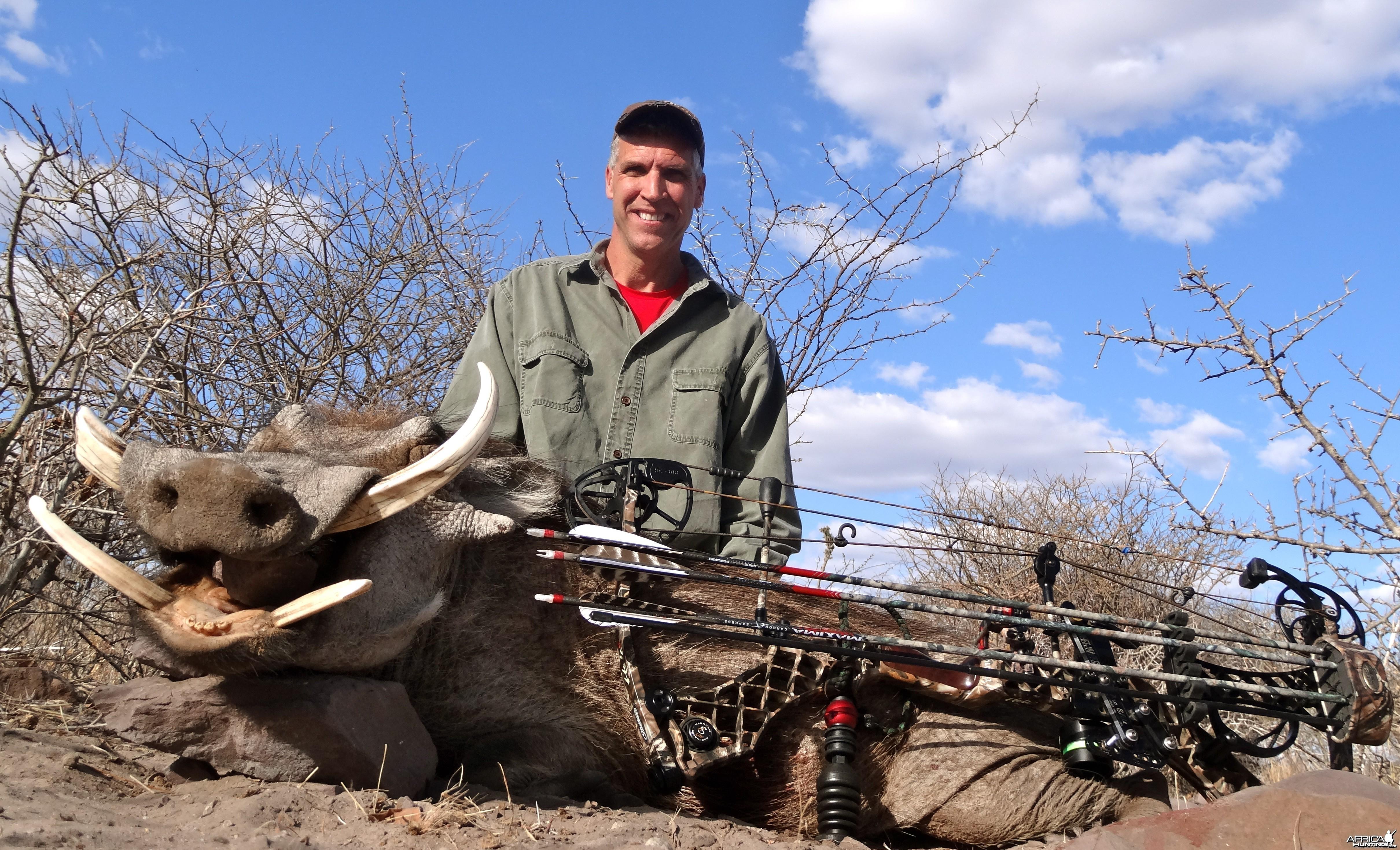 Warthog Botswana 2013