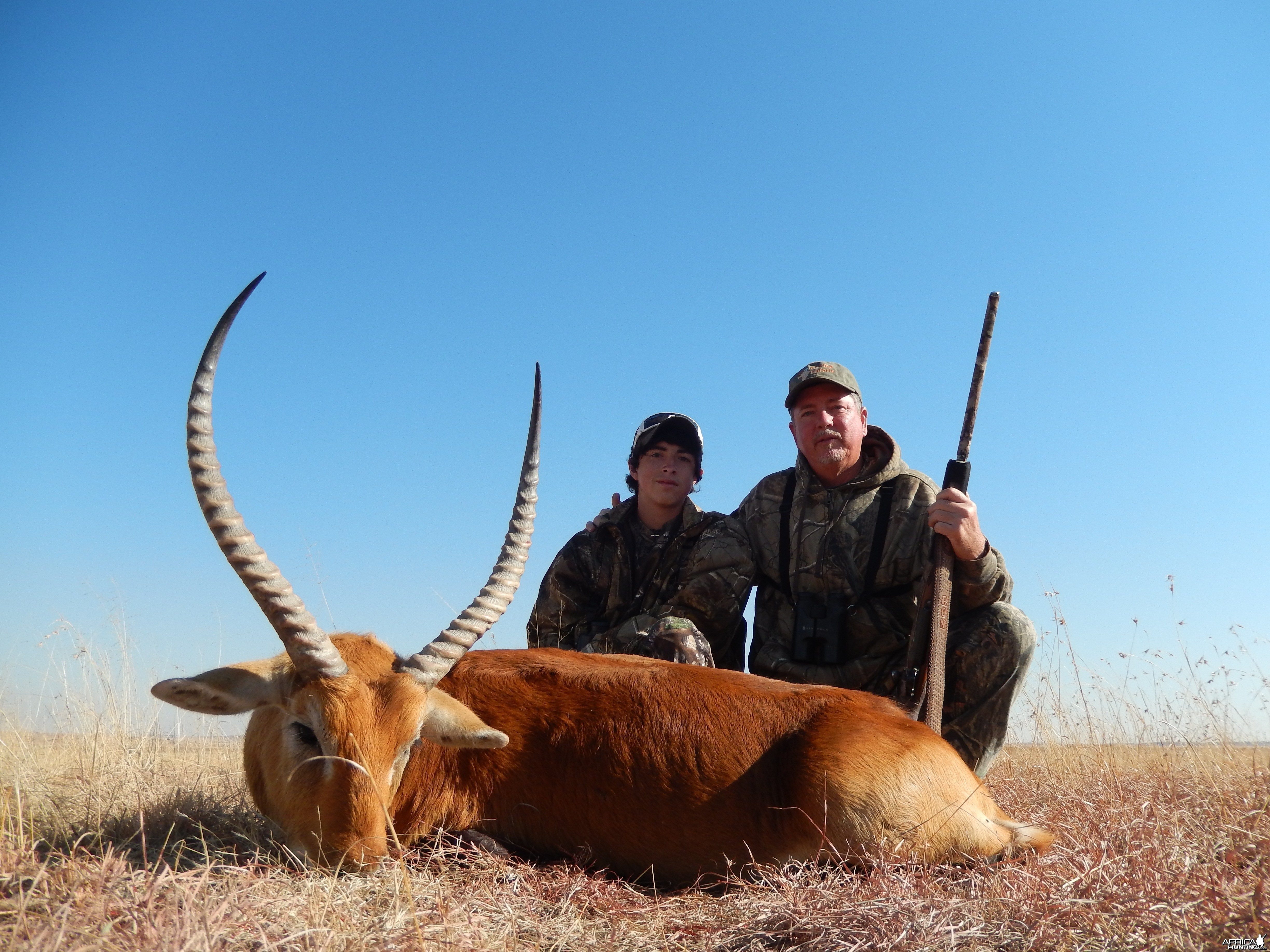 27'' red lechwe karoo s.a.