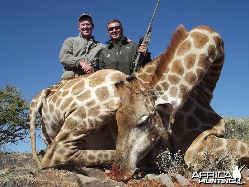 Giraffe hunt with Wintershoek Johnny Vivier Safaris