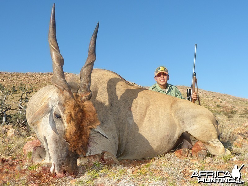 Eland hunt with Wintershoek Johnny Vivier Safaris