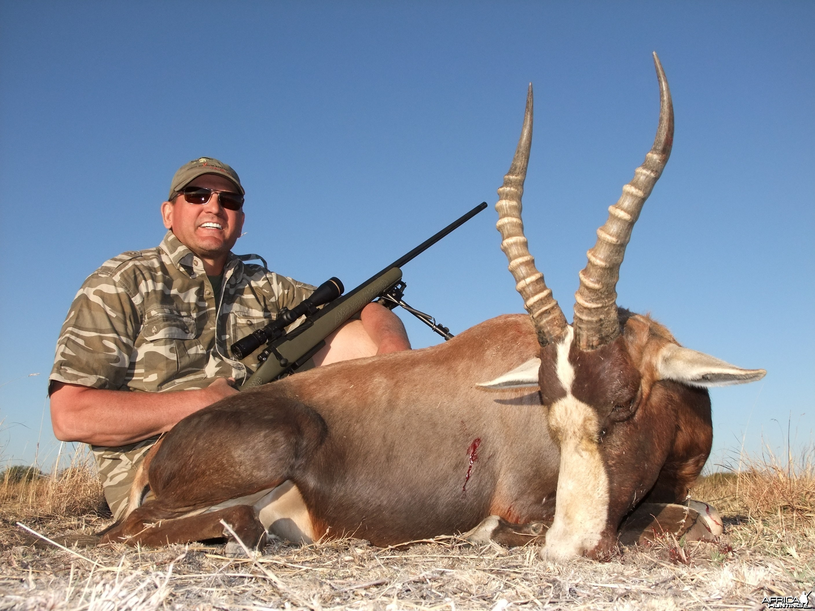 "17 3/8"" Common Blesbok"