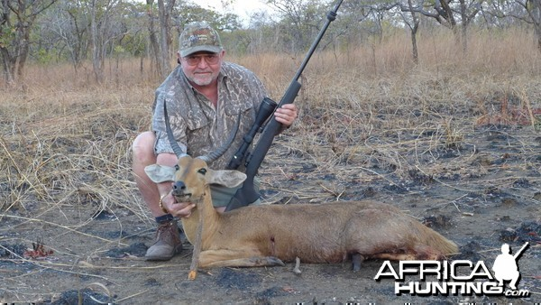 Mozambique Reed buck