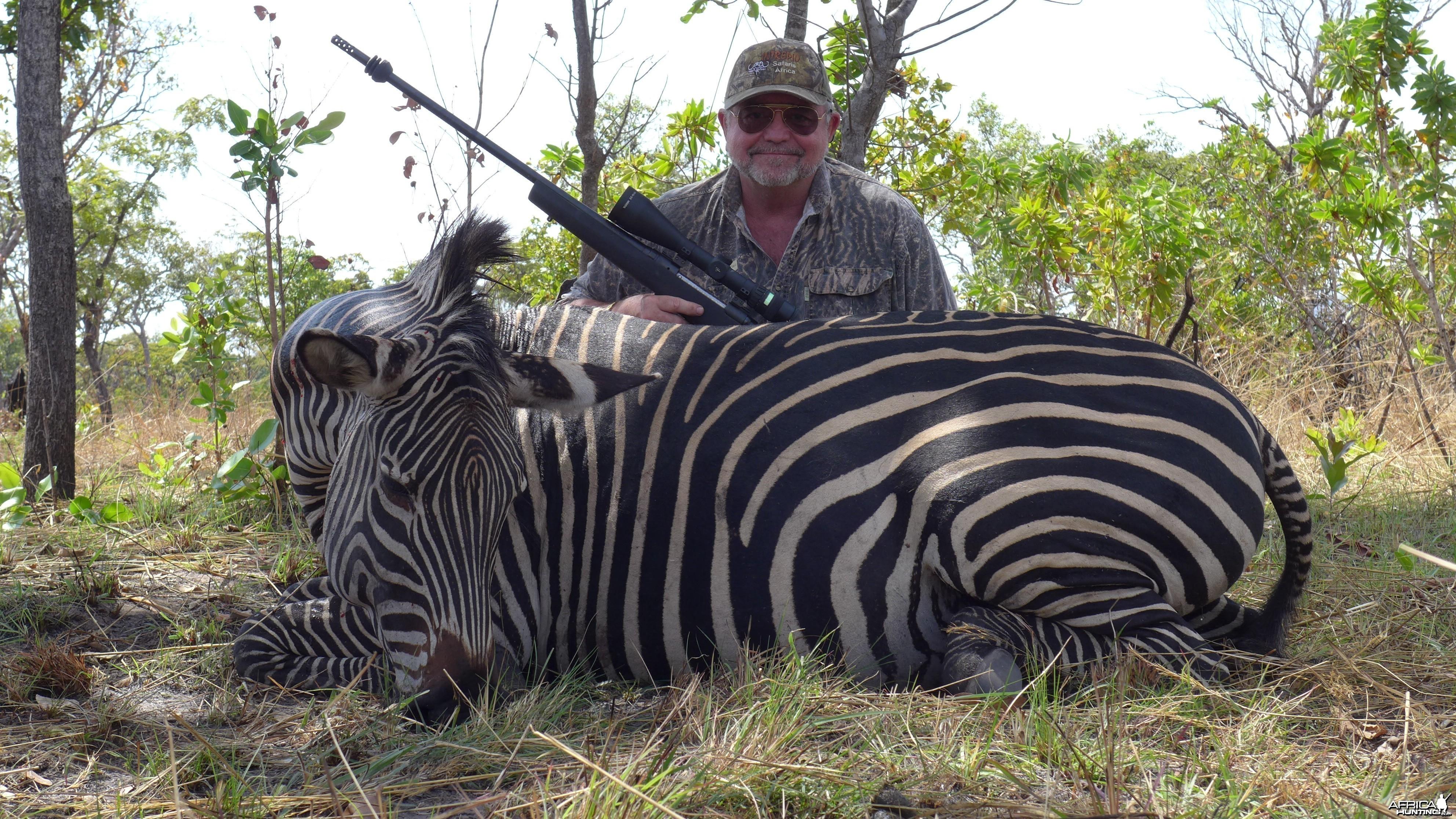 Selous Zebra
