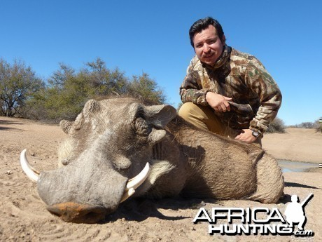 Warthog hunt with Wintershoek Johnny Vivier Safaris