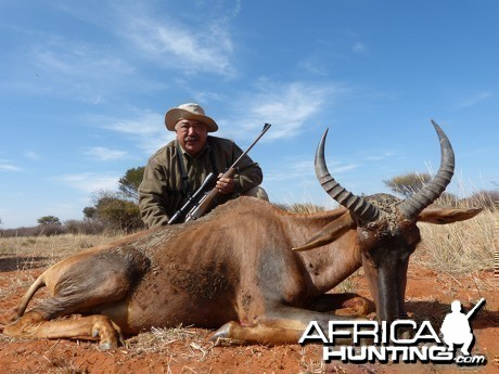 Tsessebe hunt with Wintershoek Johnny Vivier Safaris