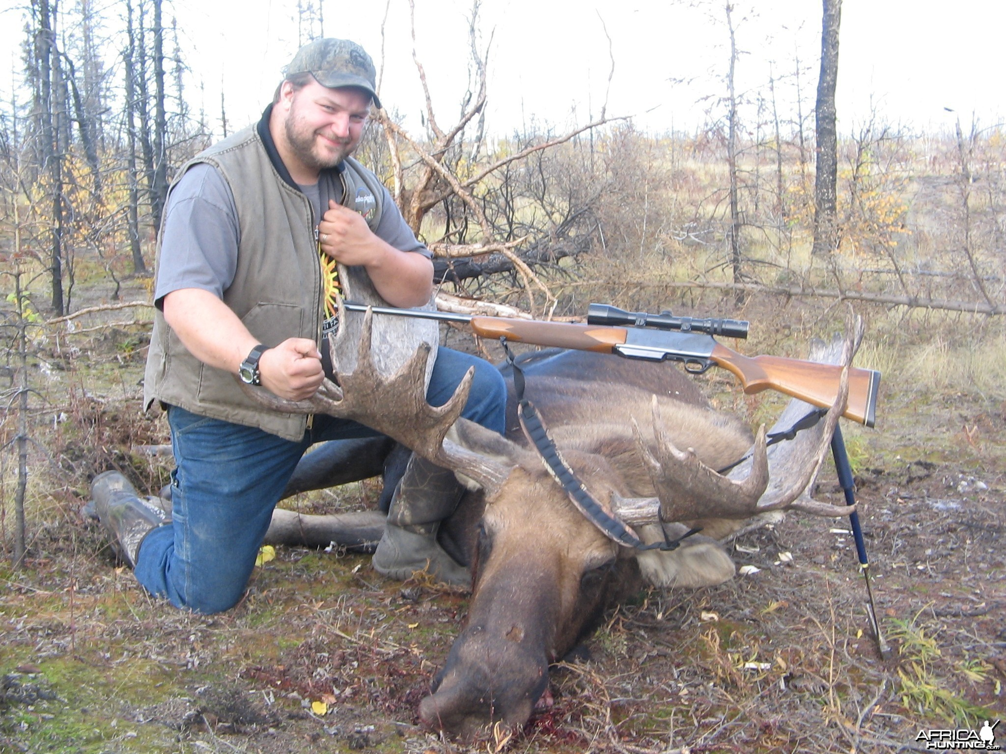 Moose 50 inch 2011