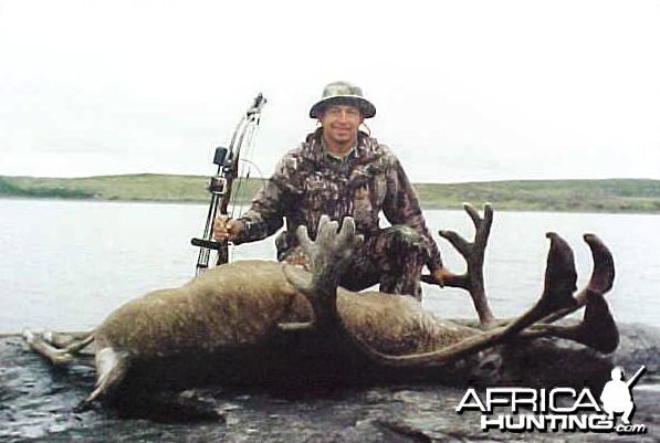Big Caribou