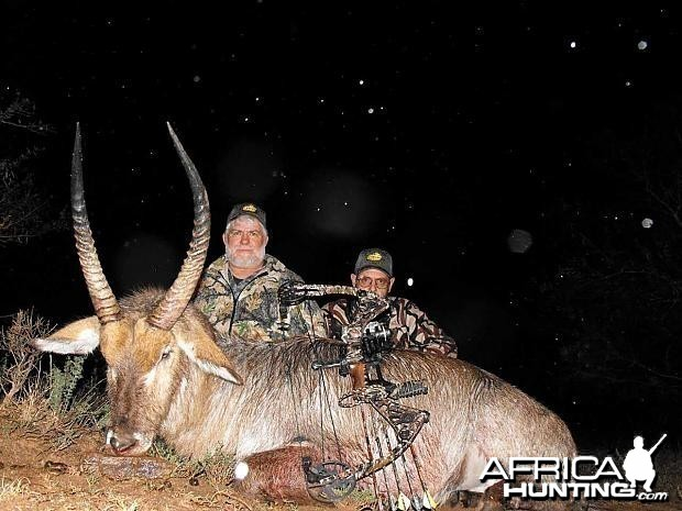 Bowhunting Waterbuck South Africa
