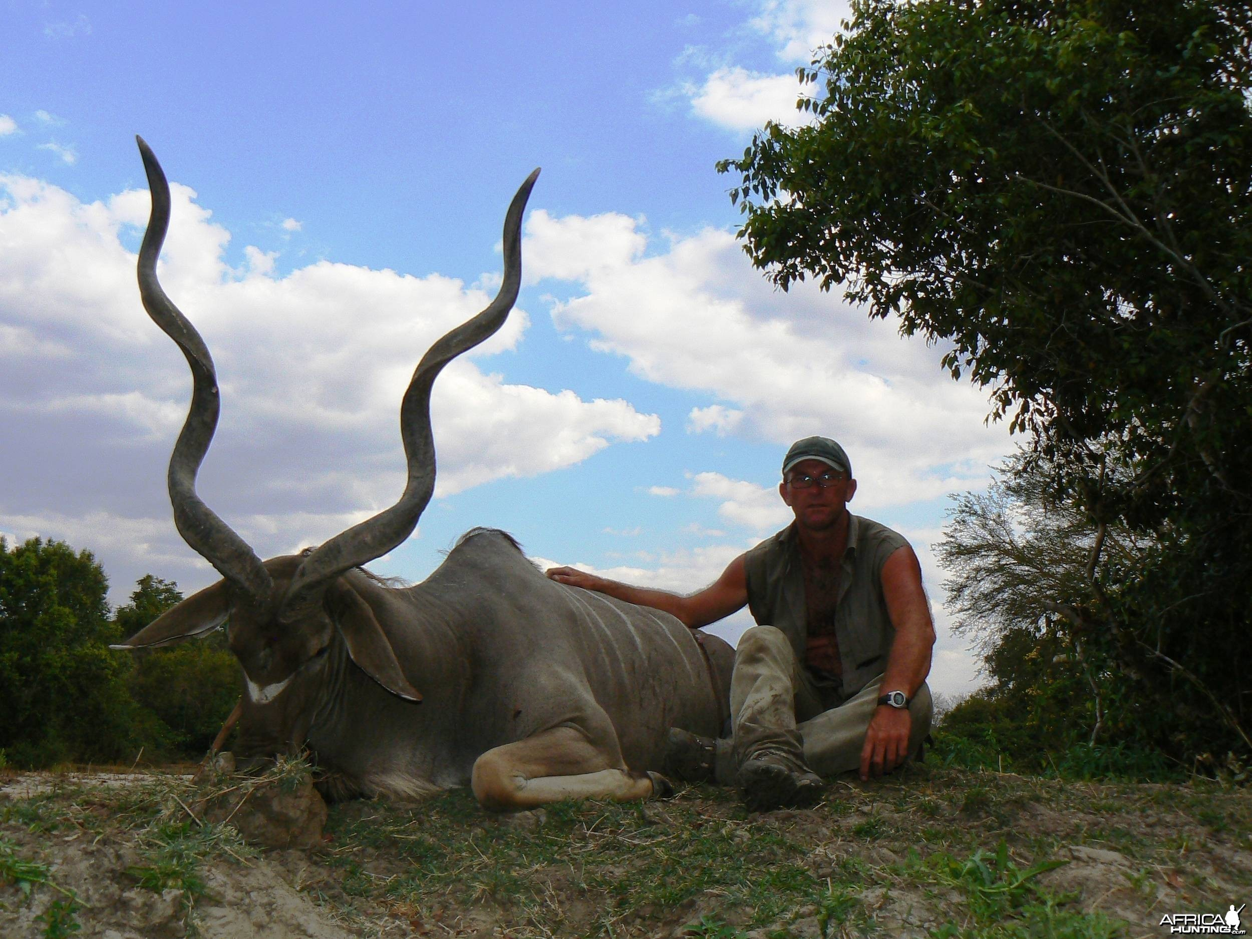 Greater Kudu with a third horn