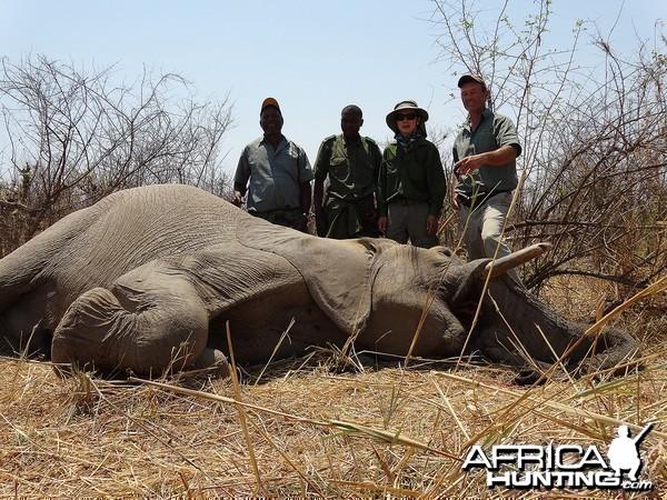 First bull - Zimbabwe October 2013