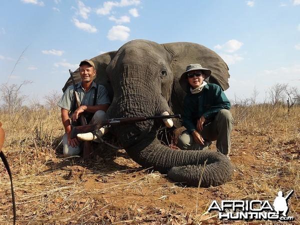 Seventh bull - Zimbabwe October 2013