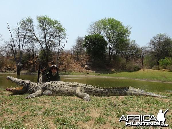 "14' 1"" croc - Zimbabwe October 2013"