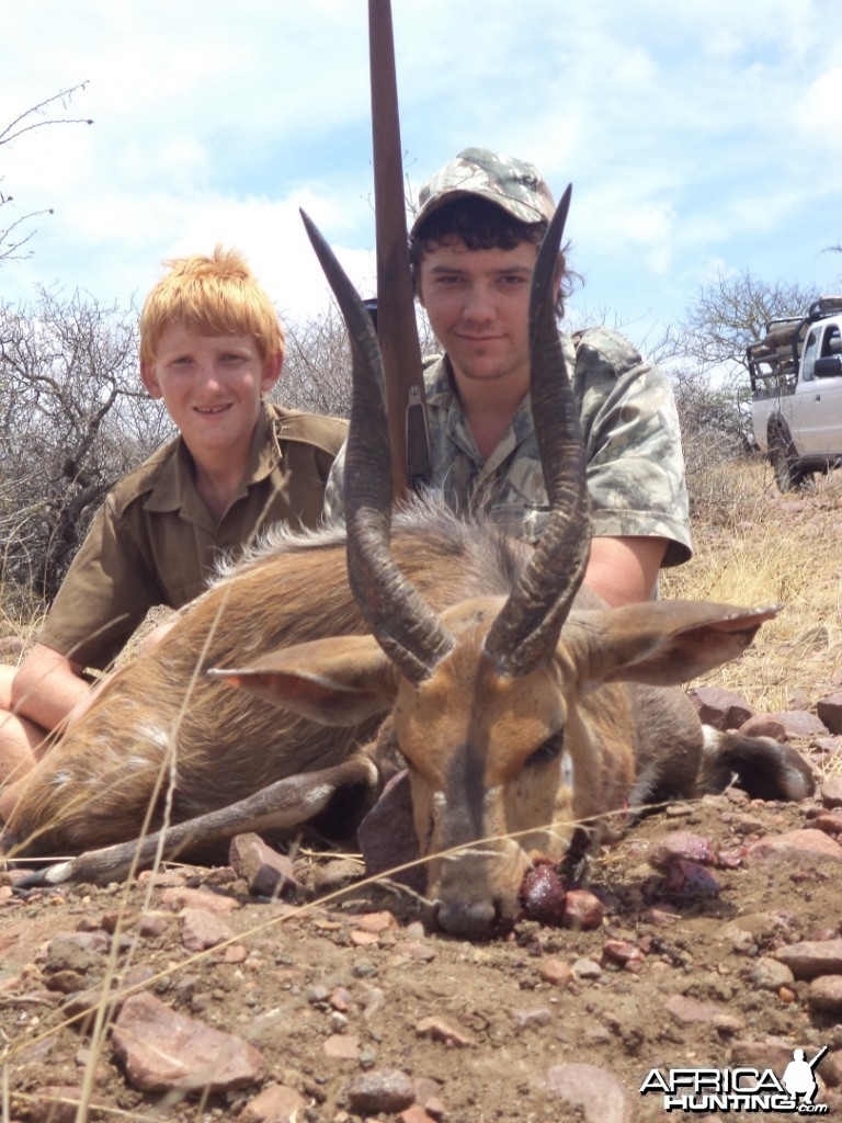 "Bushbuck ram 17"" shot at King'sKloof"